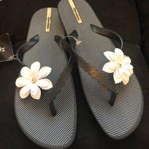 NWT Ipanema Flip Flops with Daisy